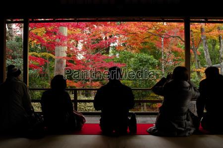 admiring autumn colours in daiho in