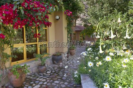 walkway through garden of guest house