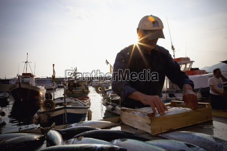 a fisherman packing fish into a